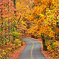 Autumn Drive Signal Mountain by Tom and Pat Cory