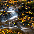 Autumn Falls - 72 by Paul W Faust -  Impressions of Light