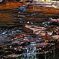 Autumn Falls 2 by Steve Harrington