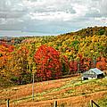 Autumn Farm 2 by Steve Harrington