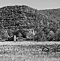 Autumn Farm Monochrome by Steve Harrington