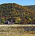 Autumn Farm Painted by Steve Harrington