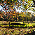 Autumn Field In Pennsylvania by Bill Cannon