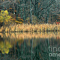 Autumn Fisherman Reflections by Mike Nellums