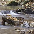Autumn Flow by Ian Middleton