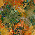 Autumn Forest Tree Tops Abstract by Debbie Portwood