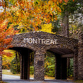 Autumn Gate by Joye Ardyn Durham