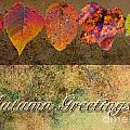 Autumn Greeting Card IIi by Debbie Portwood