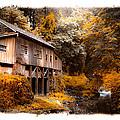 Autumn Grist by Steve McKinzie