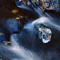 Autumn Ice In A Creek by Ulrich Kunst And Bettina Scheidulin