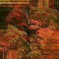 Autumn Illusion by Barbara S Nickerson