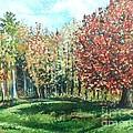 Autumn In My Backyard  by Shana Rowe Jackson