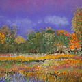 Autumn In Nisqually by David Patterson
