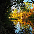 Autumn In Ohio by Dick Wood