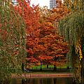Autumn In The City by Paul Mangold