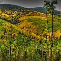 Autumn In The Rockies Hdr by Aaron Burrows