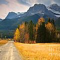 Autumn In The Rockies by Tara Turner
