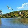 Autumn Landing by Rick Friedle