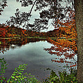 Autumn Landscape by Mikki Cucuzzo