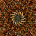 Autumn Mandala 7 by Rhonda Barrett