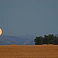 Autumn Moonrise Over Montana's Bridger Mountains by Bruce Gourley