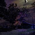 Autumn Night by John Herzog