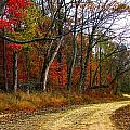 Autumn On Bottomland Road by Julie Dant