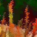 Autumn Pastel by Tom Prendergast