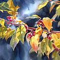 Autumn Plums by Sharon Freeman