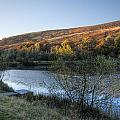 Autumn Pond 3 by Steve Purnell
