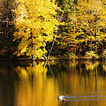 Autumn Pond by Leslie Leda