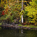 Autumn Pond by Scott Hovind