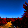 Autumn Red by Douglas Barnard