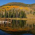 Autumn Reflections by Amara Roberts