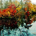 Autumn Reflections by Holly Martinson