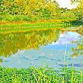 Autumn Reflections by Jennifer Kelly