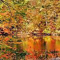 Autumn Reflections by Kristin Elmquist