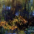 Autumn Reflections by Living Color Photography Lorraine Lynch