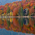 Autumn Reflections On Lake Bohinj In Slovenia by Greg Matchick