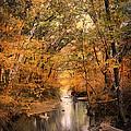 Autumn Riches 2 by Jai Johnson
