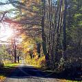 Autumn Road by Mark Papke