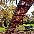 Autumn Slide by Michelle Hawk