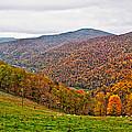 Autumn Song by Steve Harrington