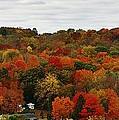 Autumn Spectacular by Bruce Bley