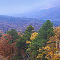 Autumn Splendor by Betty LaRue