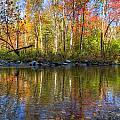 Autumn Stream by Debra and Dave Vanderlaan