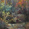 Autumn Stream by Pamela Pretty
