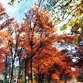 Autumn Street Perspective by Susan Savad
