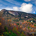 Autumn Summit by Scott Hervieux