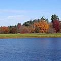 Autumn Trees By The Lake by Sandy Keeton